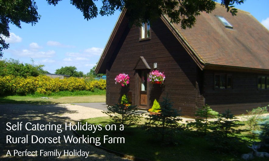 Dorset Holiday Chalets